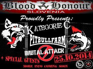 Kategorie C op een flyer van een BlooD & Honour concert in Slovenië